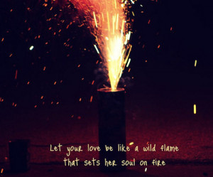 ... sayings sparks faisca wild flame fire soul love love quotes love quote