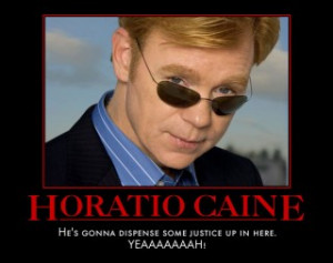 Horatio Caine Funny Quotes