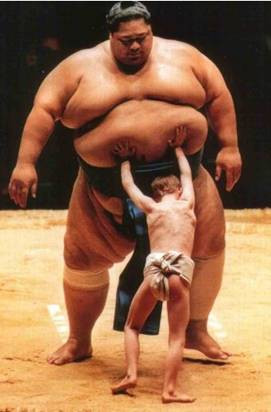 SUMO is a traditional Japanese style of wrestling. The wrestlers try ...