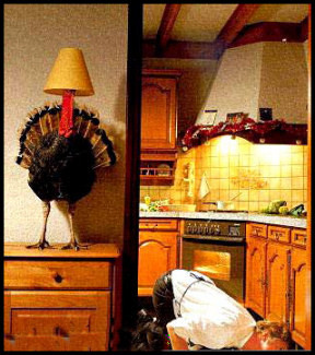 Funny thanksgiving pictures (3)