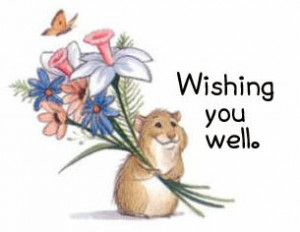 wishing you well comments