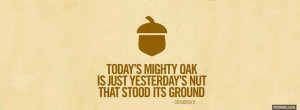 todays mighty oak quotes facebook cover