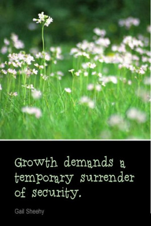 ... Growth demands a temporary surrender of security. - Gail Sheehy