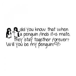 Will you be my penguin.....?