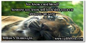 Friendship_quotes_william_s_burroughs http://www.upliftifyer.com ...