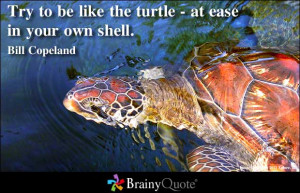 ... be like the turtle - at ease in your own shell ~ Inspirational Quote