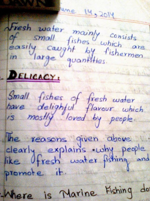 topic dignity of work lesson dignity of work