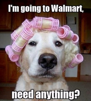 ROFLMAO! Dog needs to run to Walmart to pickup a few things. I'm dying ...