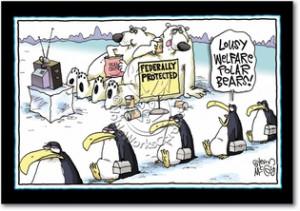 Welfare Polar Bears Inappropriate Funny Birthday Card Nobleworks