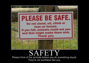 safety - Motivational Posters