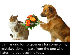 Cat And Dog Picture With Romantic Sayings Image About Sorry