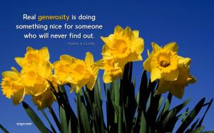 Daffodils Image Wallpaper Desktop