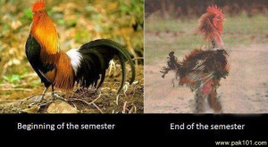 Beginning of the semester & End of the semester