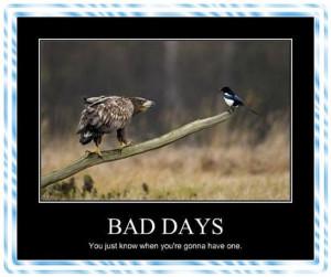 Bad Day..Grrrr
