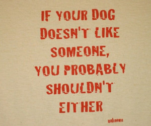 If your dog doesn't like someone, you probably shouldn't either.