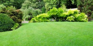 free landscaping quotes landscape design architecture and sprinkler ...