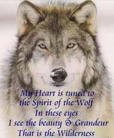 american quotes spirit animal wolves quotes animal spirit guide wolf ...