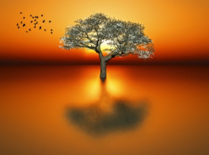 """10 Inspirational """"Calm Quotes"""" For Calm And Stress Relief"""