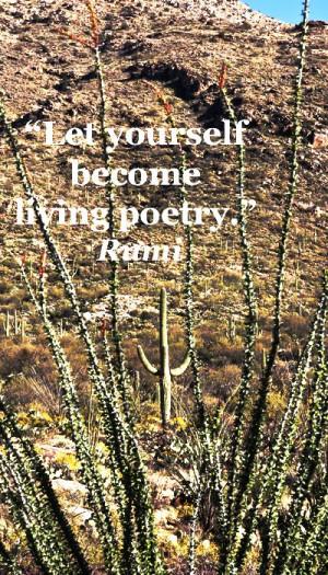 ... quotes on nature at http://www.examiner.com/article/twelve-essential