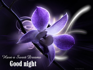 Have a Sweet Dreams ~ Good Night Quote