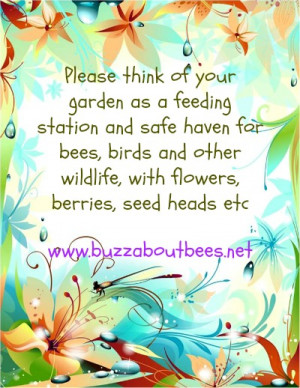 Bee Quotes And Proverbs