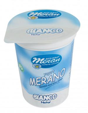 Yoghurt Yogurt Production