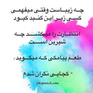 farsi #quotes #thoughts #jokes #persian #sms #jokepunch