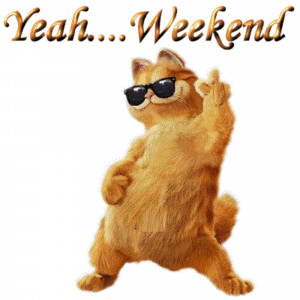 Funny Cat Dancing And Playing....Saturday Sayings With Pictures ...