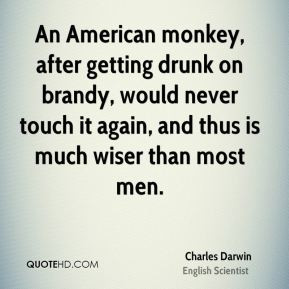 An American monkey, after getting drunk on brandy, would never touch ...