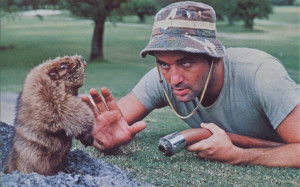 Caddyshack Bill Wallpaper 1280x800 Caddyshack, Bill, Murray