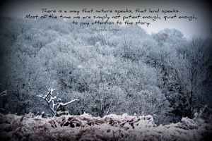 love mixing my photos with quotes. To me, it makes them more ...