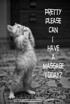 Pretty please can I have a massage today? More