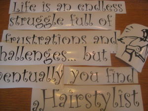 life is and endless struggle full of frustrations and challenges ...