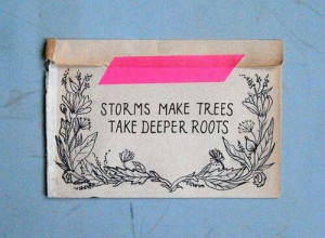 Storm makes trees take deeper roots