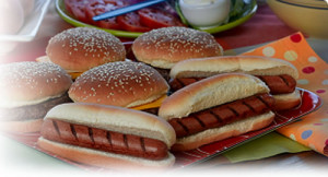 bbq picnic catering bbq picnic catering