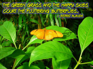the green grass and the happy skies court the fluttering butterflies ...
