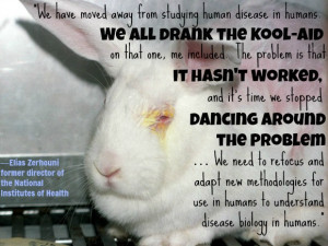 Quotes About Animal Testing