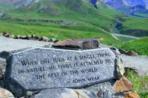 John Muir Quote - Denali National Park.