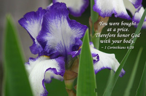 : [url=http://www.imagesbuddy.com/god-quote-with-beautiful-flower ...