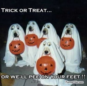 Trick or Treat, or we'll pee on your feet !!