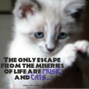 Page 1 of Quotes about cats- Inspirably.com
