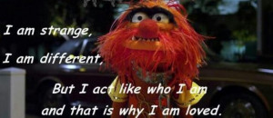 Animal Muppet Quotes