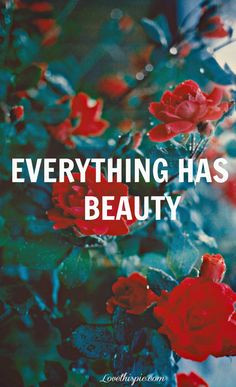 ... quotes quotes photography quote beautiful flowers roses beauty red