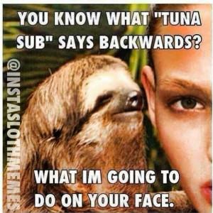 Sloths Spoilers Bust, Omfg That Sloths, Creepy Sloths, Lil Sloths