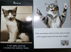 By the way, here's some more funny cat-cards that daddycat got late ...