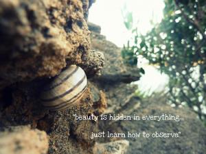 Beautiful Landscape Quotes