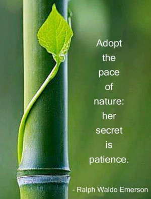 ... pace of nature: her secret is patience. - Ralph Waldo Emerson quote