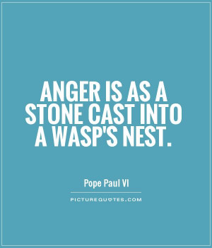 Anger is as a stone cast into a wasp's nest Picture Quote #1