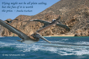 Sayings, Quotes: Amelia Earhart