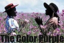 The Color Purple Home